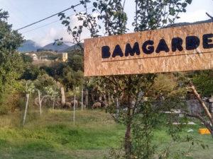 BAMGarden