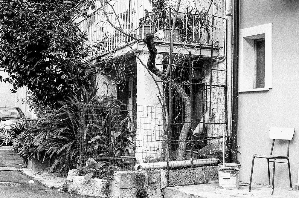 La Storia delle Cose Improponibili Il Giardino_Forse ho un po